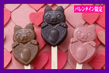 心ばかり 加加阿ちゃんスティックチョコレート