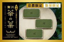 口切お濃茶ラングドシャ 贅沢茶の菓